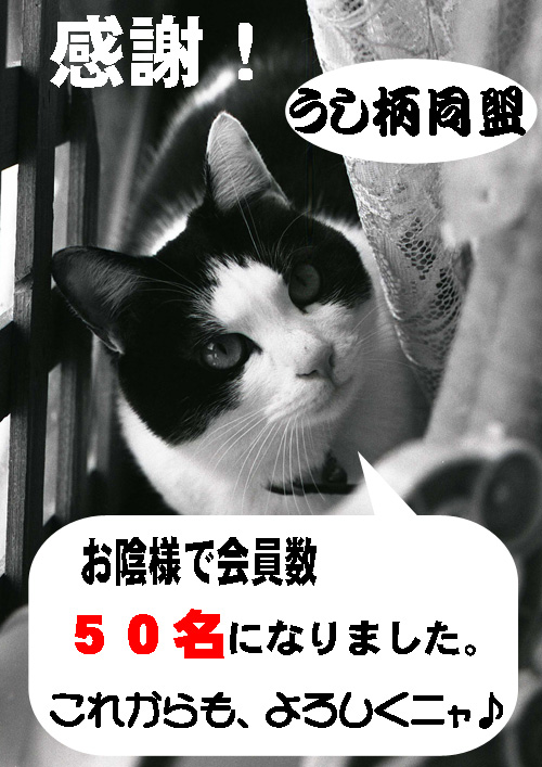 ポスター090507.jpg